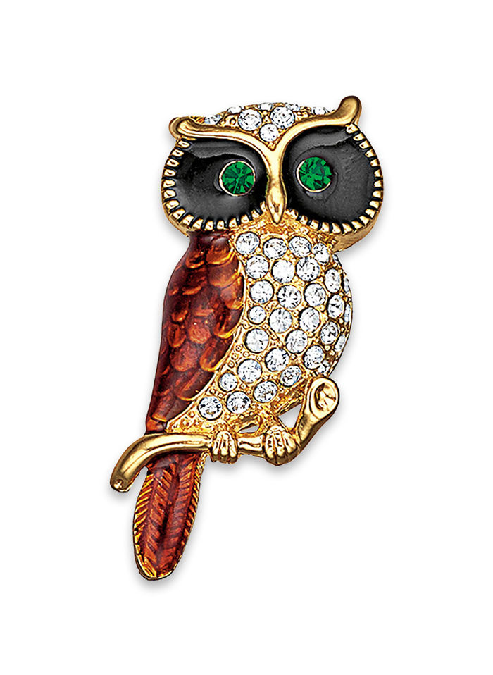 Watchful Owl Pin